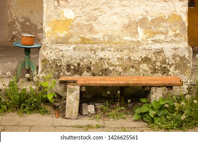 Old wooden bench on weathered concrete wall background with flower pot on round table and blowball dandelions around