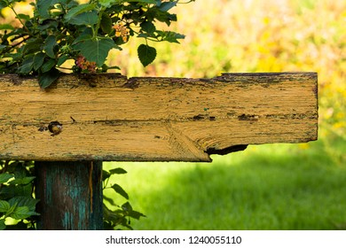 Old wooden bench overgrown with wild flowers