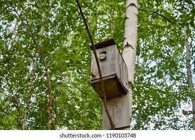 old wooden birdhouse on the birch, not a beautiful birdhouse, Russian birdhouse