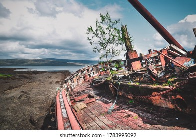 an old wooden boat sits abondoned with a plant- life slowly creeping on it