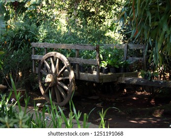 An old wooden boogie in the tropical garden surroundings. Big wooden wheel, body with plant pots, tropical vegetation around. Taken in El Salvador (Central America).