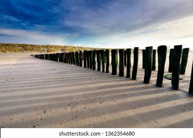 old wooden breakwater on sea beach, Netherlands