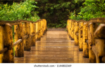 Old wooden bridge in the forest near the lake Synevyr