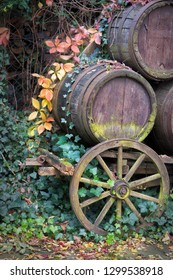 old wooden car with wine barrels in autumn