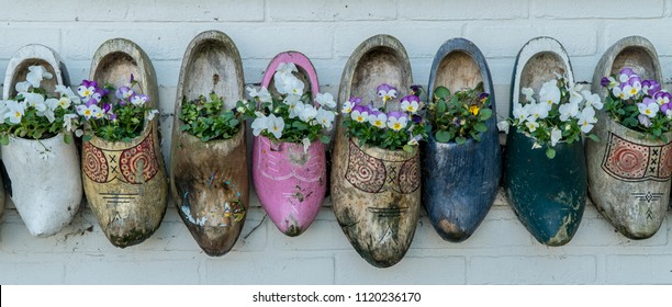 Old wooden clogs with blooming flowers in Netherlands