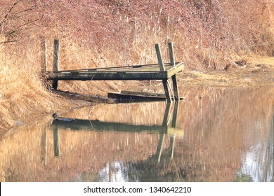 An old wooden dock during the early Spring season that will soon give way to the creek it stands beside.