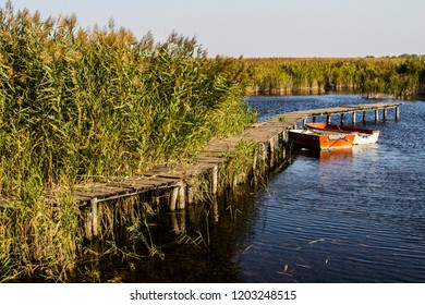 Old wooden dock on Ludas Lake near Subotica, Serbia