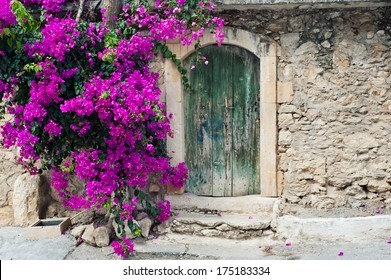 Old wooden door and bougainvillea on Crete