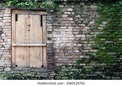 Old wooden door in a brick wall covered with green moss