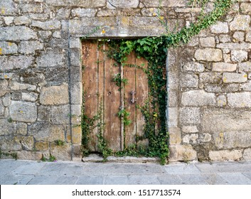 old wooden door with greenery on stone wall