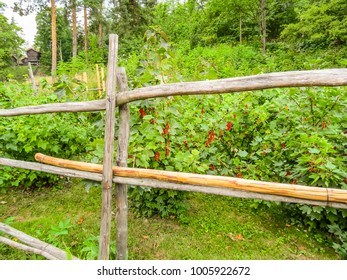 Old wooden fence on a kitchen garden