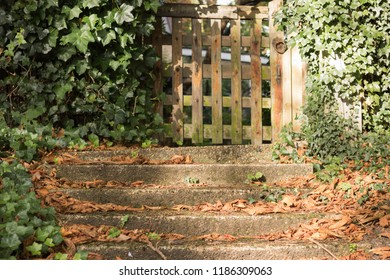 Old wooden gate is closed. Stone steps are with fallen autumn leaves. Concept: autumn on the threshold.