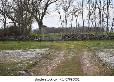 Old wooden gate and a dry stone wall in the world heritage site at southern Oland in Sweden