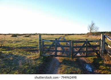 Old wooden gate into the Great Alvar Plain, an unique landscape at the swedish island Oland