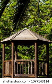 An old wooden hut, soiled by children's writings, inside a park surrounded by green trees and leaves.