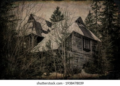 Old wooden mysterious house in the forest. Witch's home