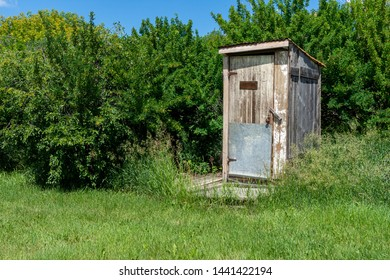 Old wooden outhouse sitting among some bright green bushes.