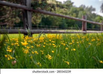 old wooden rural fence in the village, natural background