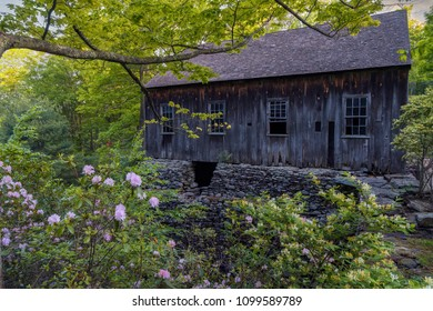 Old wooden saw mill with blooming azaleas