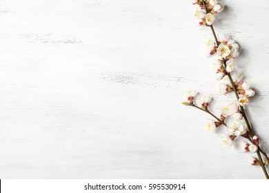 Old wooden shabby background with branches of blossoming apricot.
