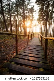 Old wooden steps of a beautiful staircase leading down to the sea in a pine forest at sunset