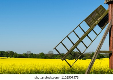Old wooden windmill by a blossom rapeseed field at the swedish island Oland