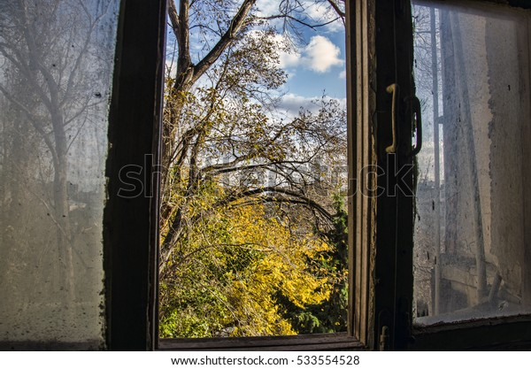 Old Wooden window overlook autumn trees