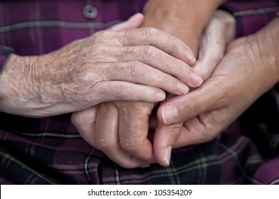 Old and young hands, Hands of the old woman