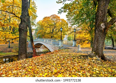 olden colors of autumn in a public domain park, Europa, Latvia, Riga