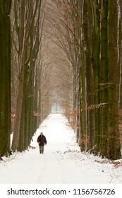 OLDENZAAL, OVERIJSSEL / NETHERLANDS - MARCH 2, 2006: Man walking through snow at Estate Egheria.