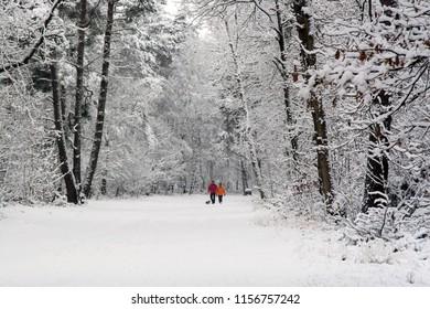 OLDENZAAL, OVERIJSSEL / NETHERLANDS - NOVEMBER 24 2008: Man and woman walking through snow on park Hulsbeek.