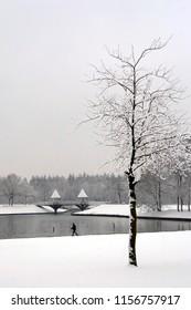 OLDENZAAL, OVERIJSSEL / NETHERLANDS - NOVEMBER 24 2008: Man walking through snow on park Hulsbeek.