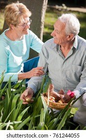 Older couple hiding chocolate eggs in a garden