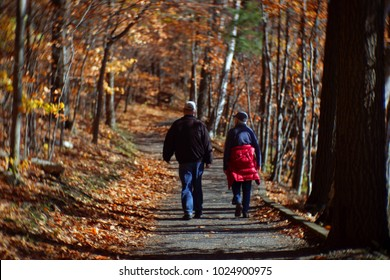 Older couple hiking in the forest. Beautiful senior couple hiking outside in sunny autumn nature. Two older men walking by hiking trail. Couple hiking in fall forest. Mont-Saint-Bruno National Park.