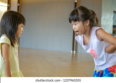 An older sister is yelling at a younger sister.