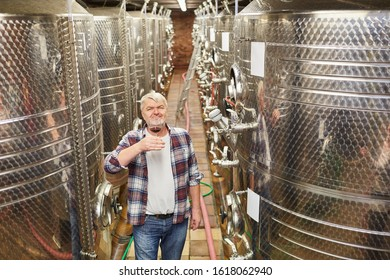 Older winemaker as a wine master drinks a glass of red wine in front of a fermentation tank