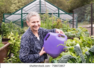 Older woman with short grey hair watering abundant garden with green house behind (selective focus)
