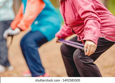 Older women are engaged in Nordic walking, close-up hands with sticks. Sports concept in park.