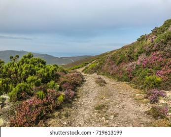 "The oldest Camino de Santiago in Spain - the ""Camino Primitivo"" - leading from Oviedo to Santiago de Compostela (on the picture the old route from Borres via Hospitales to Berducedo)"