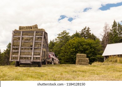 Old-fashioned antique haywagon full of bales of hay in a hay field with workers and farm equipment in the distance.