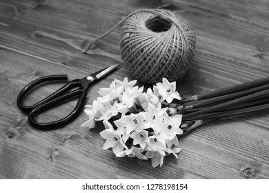Old-fashioned florist scissors with a bunch of white narcissi and a ball of twine, gathered on a wooden table - monochrome processing