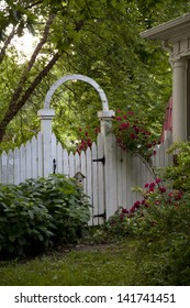 Old Fashioned Garden Gate With Climbing Tea Roses.
