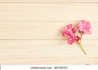Oleander and Plumeria on wooden  , Top view of flowers on wooden table