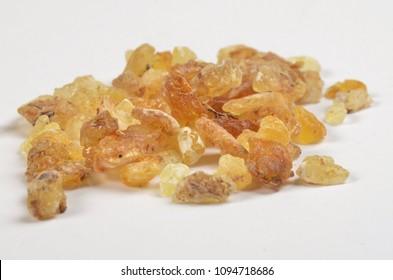 Olibanum, Boswellia serrata