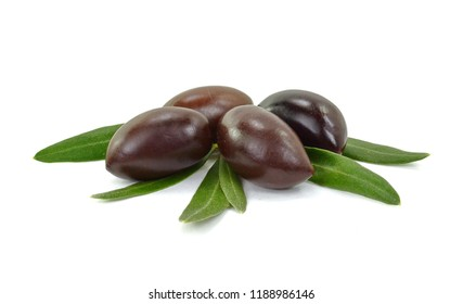 Olive branch with black olives, isolated on white background
