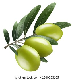 Olive branch with three green olives, isolated on white background
