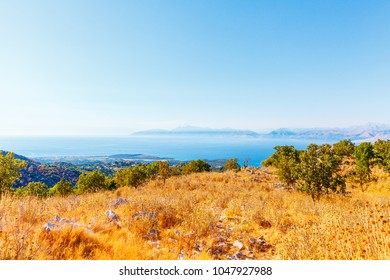Olive grove, sea and mountains