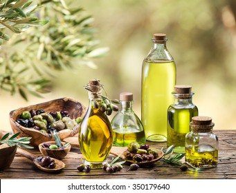 Olive oil and olive berries are on the wooden table under the olive tree.