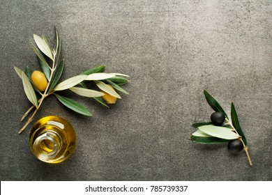 Olive oil and olive branch on gray background
