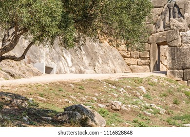 olive tree in front of the Lions Gate at the main entrance of the citadel of Mycenae, 13th century BC , Greece